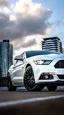 Mustang-7304996.JPG