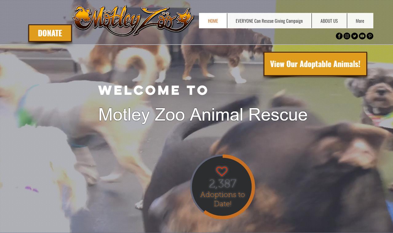 Motley Zoo Animal Rescue Website Page