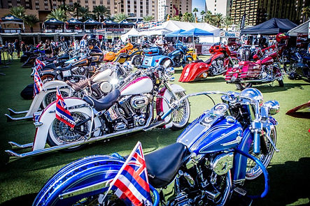 Custom bikes on display at Vega BikeFest