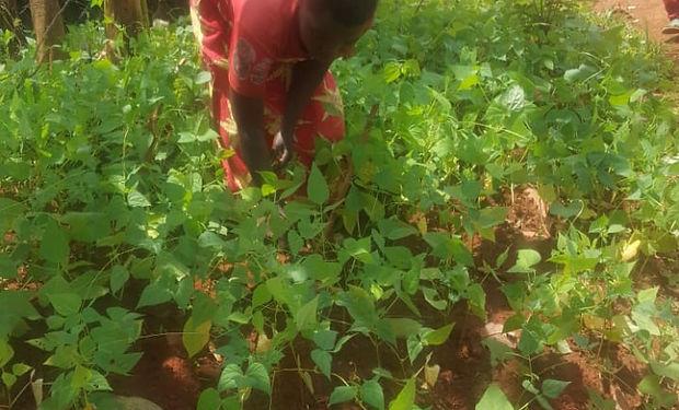 Burundi farming_edited.jpg