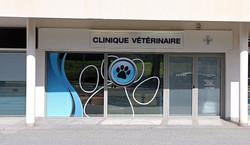 veterinaire saint raphael_edited_edited