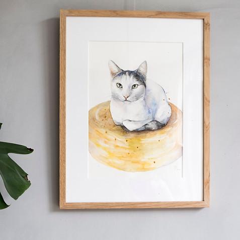 Kat aquarel in opdracht