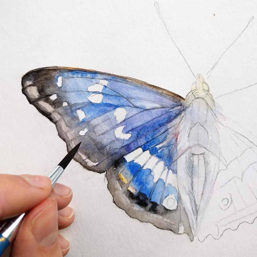 Watercolor Workshop   Wonderful Nature Leiden