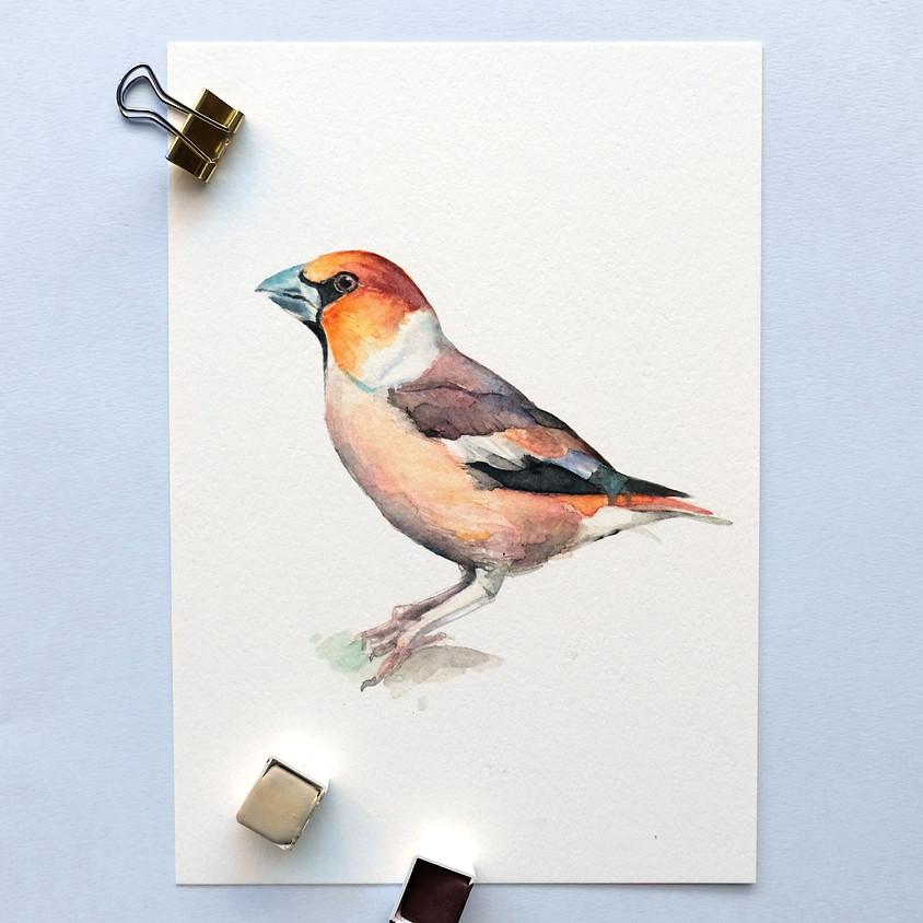Creative Life: Vogels workshop 15.15 uur VOL