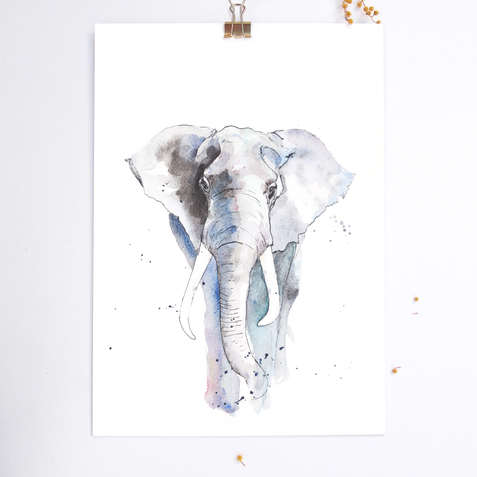 009 - olifant2018.jpg
