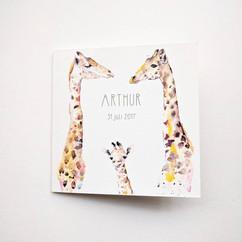 Giraffe geboortekaartje