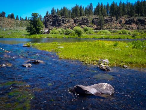The Beautiful Williamson River