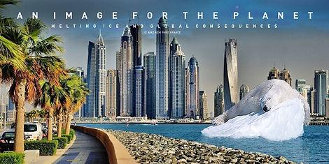 POLAR BEAR DUBAI.jpg