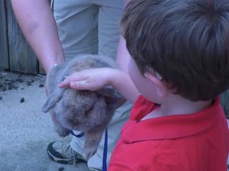 USM Children's Center celebrates Zoo Day