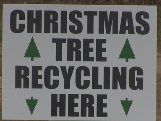 How Should You Properly Dispose of Your Christmas Tree?