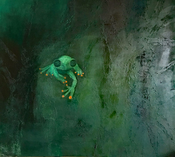 Frog Frosch rana.jpg