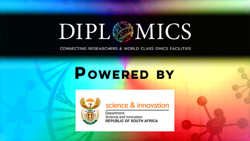 DIPLOMICS DSI.jpg