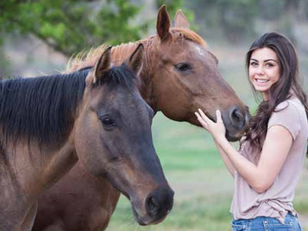 The Art of Doing Nothing with Horses