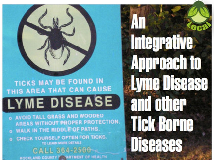 An Integrative Approach to Lyme Disease and other Tick Borne Diseases