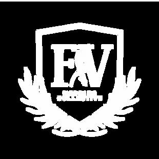 logo white FV Colective.webp