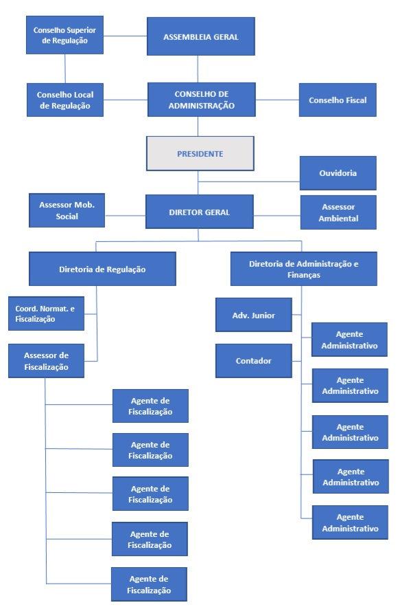 estrutura organizacional jpg 11.10.jpg