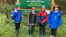 Exploring Brackloon Woods