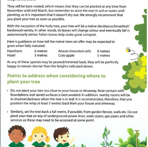 Free tree for every pupil!