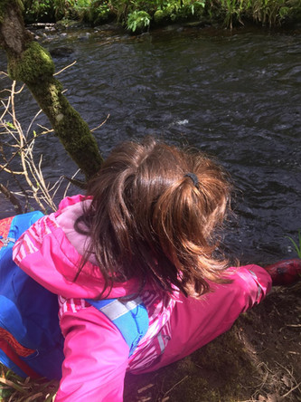 Junior Explorers visit Brackloon