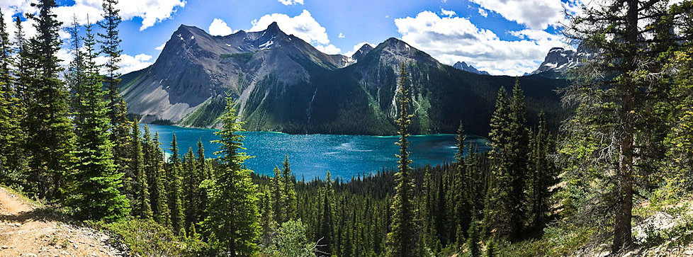Aster Mountain Adventures Hiking Guiding In The Canadian