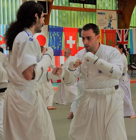 aikido arts martiaux takeda vitrolles