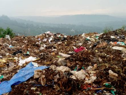 Understanding Biodegradable Plastic