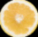 Screen Shot 2020-03-02 at 9.43.49 AM cop