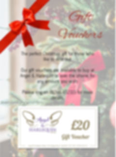 VOUCHER christmas poster_edited.jpg