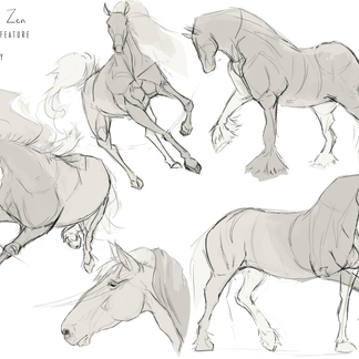 Concept Art _ Horse Study