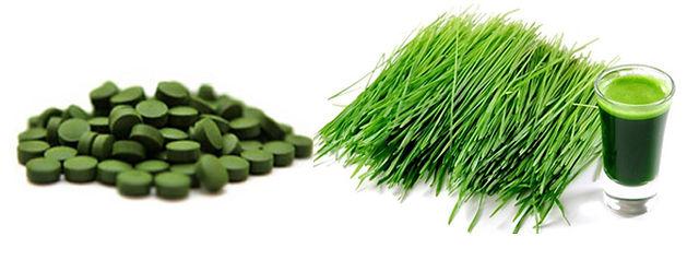 Zelené potraviny Green Ways Brno