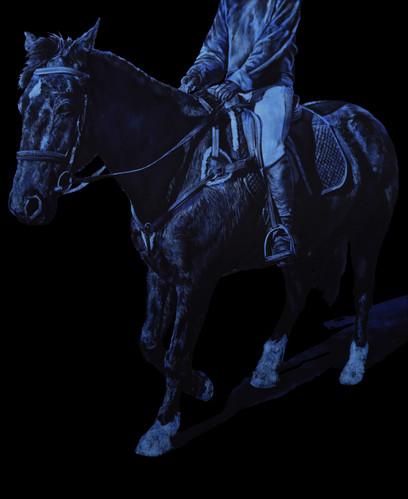 SLEEPY HOLLOW (DARK HORSE STUDY 3)