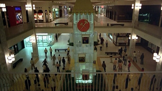 Decline and Fall of America's Shopping Mall