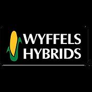 Wyffels.png