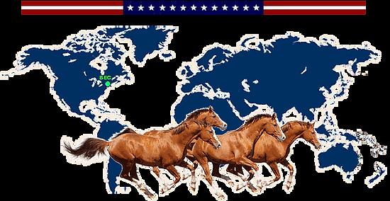 USA Virtual Presence TRANS.png