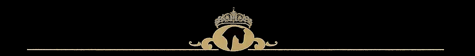 TIARA EQUEST FOOTER SMALL.png