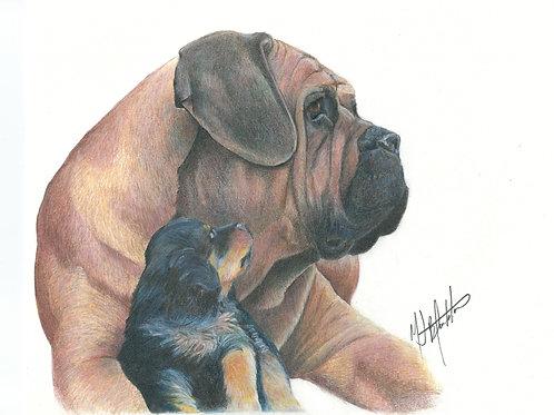 "8.5 x 11 - ""My Hero"" English Mastiff and Rottweiler pup"