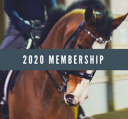 2020 LDS Membership