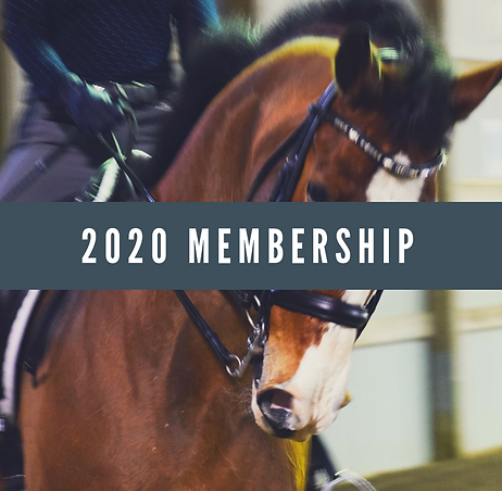 2020 LDS Additional Family Membership