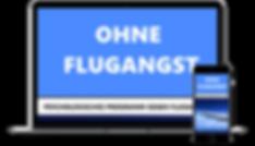 Flugangst Programm.png