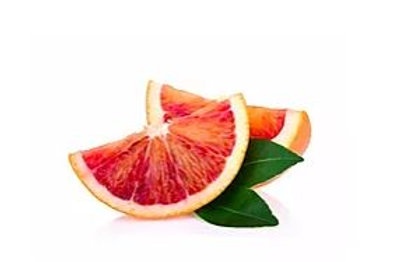 Citrus sinensis - 'Harvard' Blood Orange
