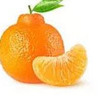 Citrus tangelo - Seminole