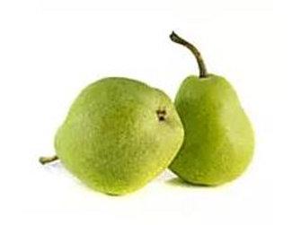 Pyrus communis - 'Josephine' Pear