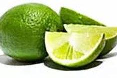 Citrus aurantiifolia - Tahitian Lime