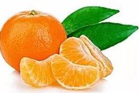 Citrus reticulata - 'Emperor' Mandarin