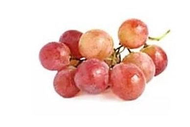 Vitis vinifera - 'Red Globe' Grape