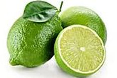 Citrus aurantiifolia - West Indian Lime