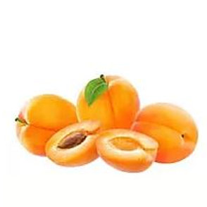Prunus armeniaca - 'Bulida' Apricot
