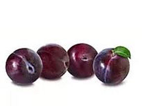 Prunus salicina - 'Satsuma' Plum