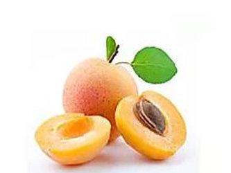 Prunus armeniaca - 'Glengarry' Apricot