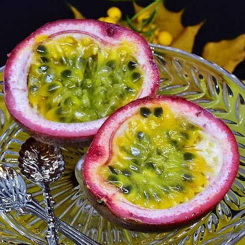 Passiflora edulis - Passionfruit